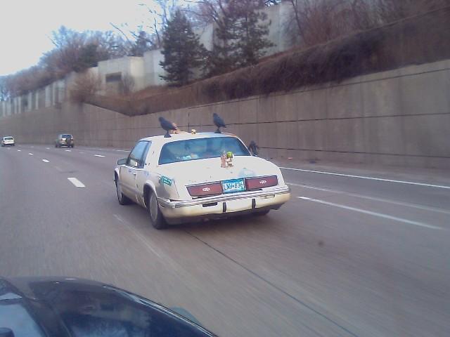 bird car on the interstate